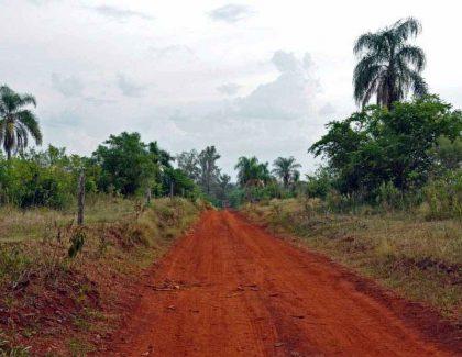 Esteros del Iberá, Estancia Santa Ines (Posadas), Iguazú, Oktober 2011