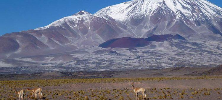 El Paso San Francisco (4700m) – Chile – Argentinien